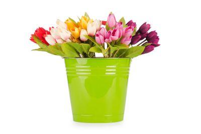Tulips flowers in the green bucket