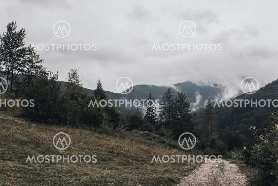 rocky high mountains. Forest fog laid on the tops of the...
