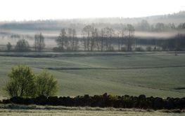 Dimma över fälten  (Sweden)
