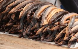 Fresh smoked eel