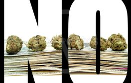 Marijuana NO