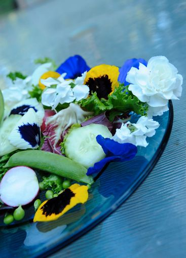 Salad And Edible Flowers