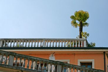 Salo, house detail with palm