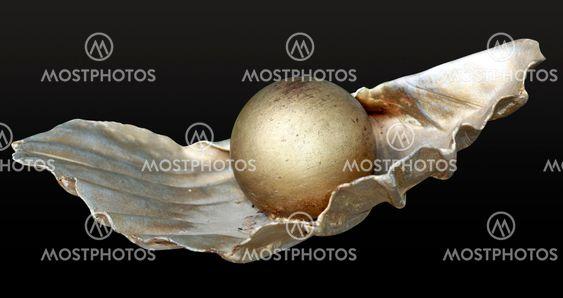 Pärla på skal