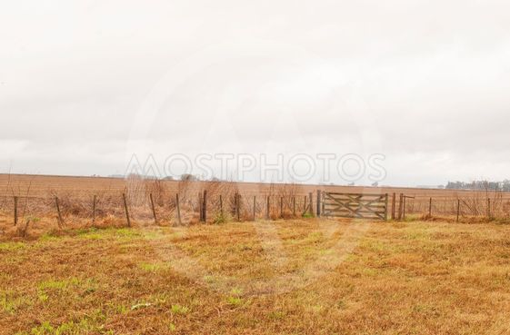 agricultural farm in the fall