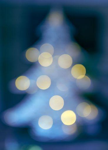 silky background of bokeh christmas tree lights