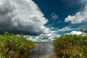 Beautiful summer landscape lake and blue sky. Copy space.