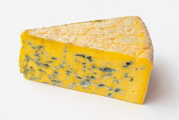 Piece of moldy cheese