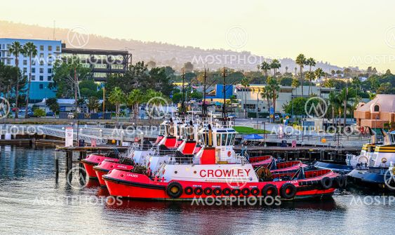 Three Red and White Tugboats