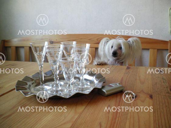 Snappsglas