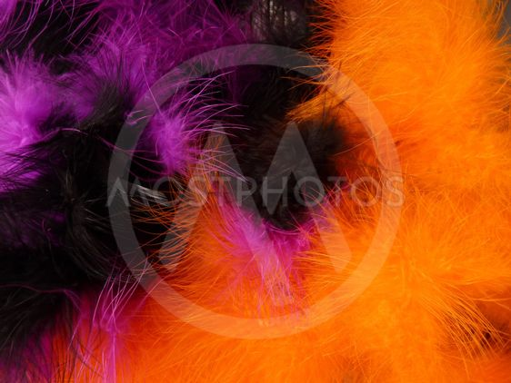 Background - colourful feathers