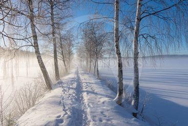 En solig vinterdag