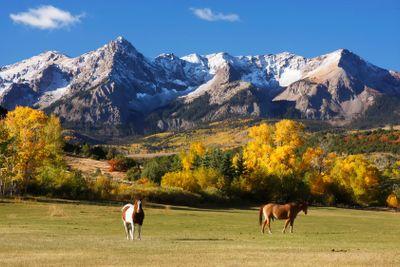 Dallas Divide, Uncompahgre National Forest, Colorado