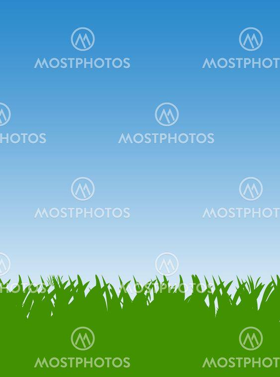 Green Grass gräsmatta