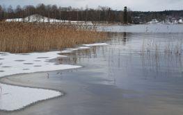 Vintern är på gång  (Sweden)
