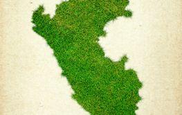 Peru Grass Map