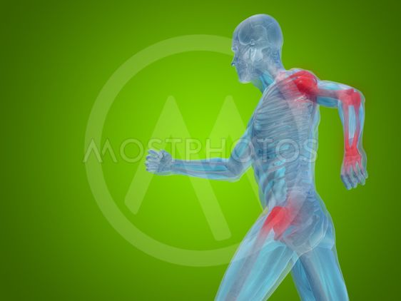 Conceptual 3D human man anatomy or health design, joint...