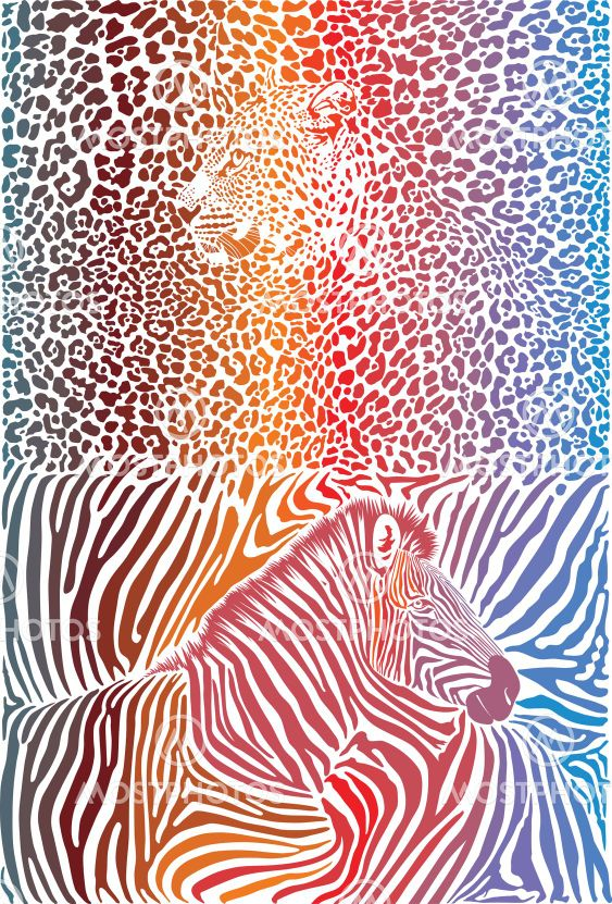 Leopard and zebra with color background