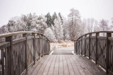Mayor's Bridge with Frost