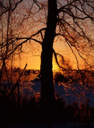 sunrise/sunset in winter