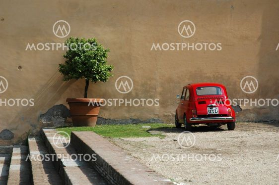 Fiat by flowerpot