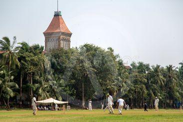 Cricket in Mumbai, India