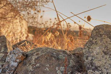 Stones on dry and arid terrain
