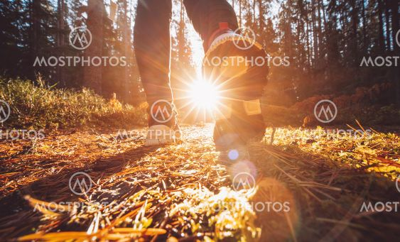 Woman alone in the autumnal forest in sunrise.