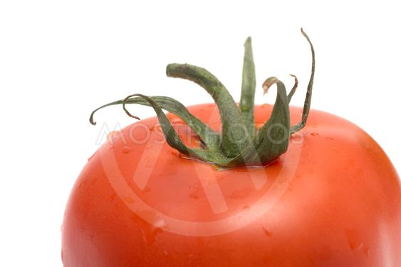Röd tomat på vit bakgrund