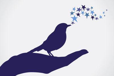 Bird in hand.