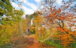 Annweiler Rehbergturm in Palatinate Forest in autumn