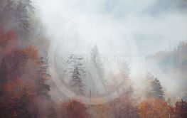 Landscape of misty mountain hills at fall