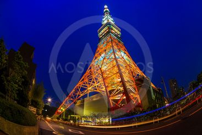 Light up at Tokyo Tower