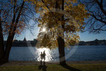 Gamla stan vy från Skeppsholmen