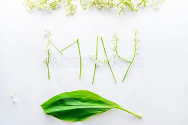 White background with word May - letters made of flowers...