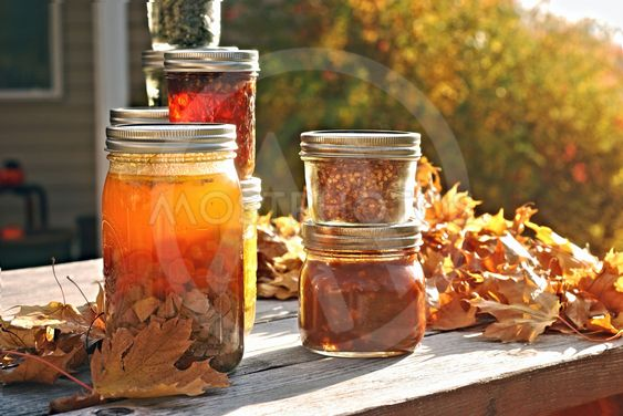 Autumn Canning