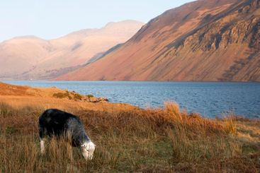 end of day at wast water in lake district