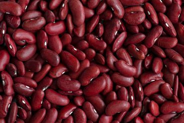 Raw red beans