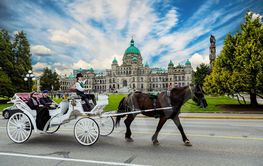Horse and Buggy in Victoria