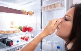 Woman Recognizing Bad Smell From The Refrigerator