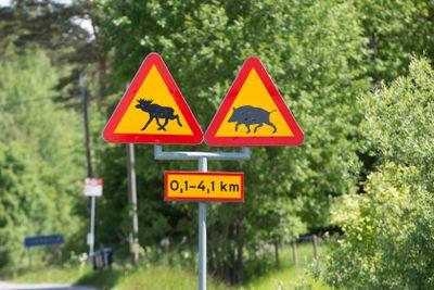 Varning för vilt