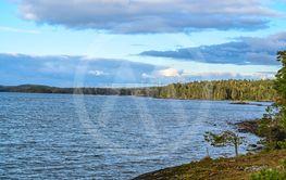 vindkraft skog och sjö