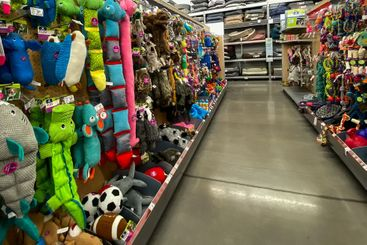 A display of various brands of colorful dog toys for...