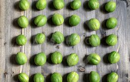 Young green fruits of walnuts lie in rows on a gray...