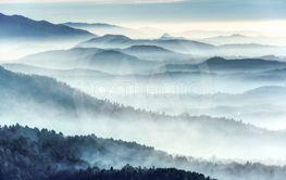 Misty landscape in a winter morning