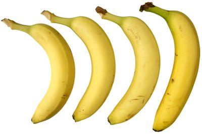 Four bananas isolated on white background.