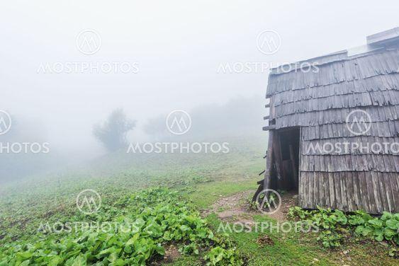 Shepherds hut.