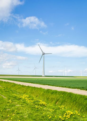 Dutch Wind turbine park along the dikes