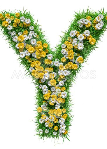 Letter Y Of Green Grass And Flowers