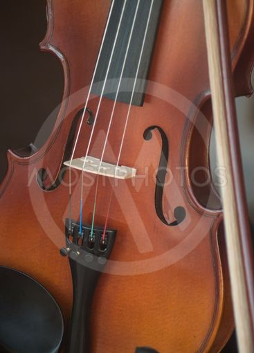 wooden violin in store showroom